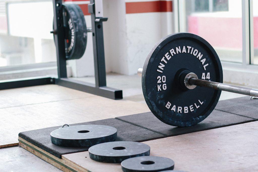 vi fitness standard weight plates