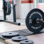 vi fitness standard weight plates