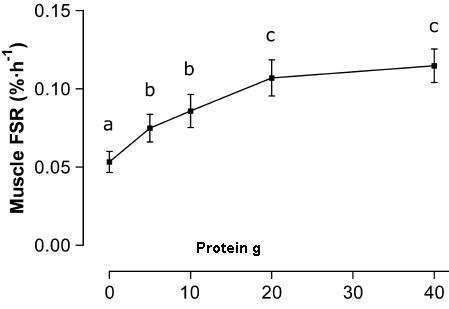 muscleFSRtoprotein