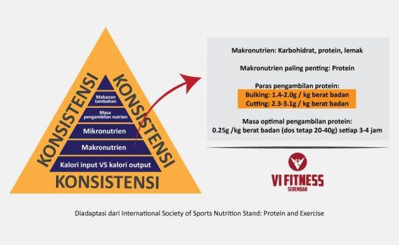 Hierarki-Kalori-Protein