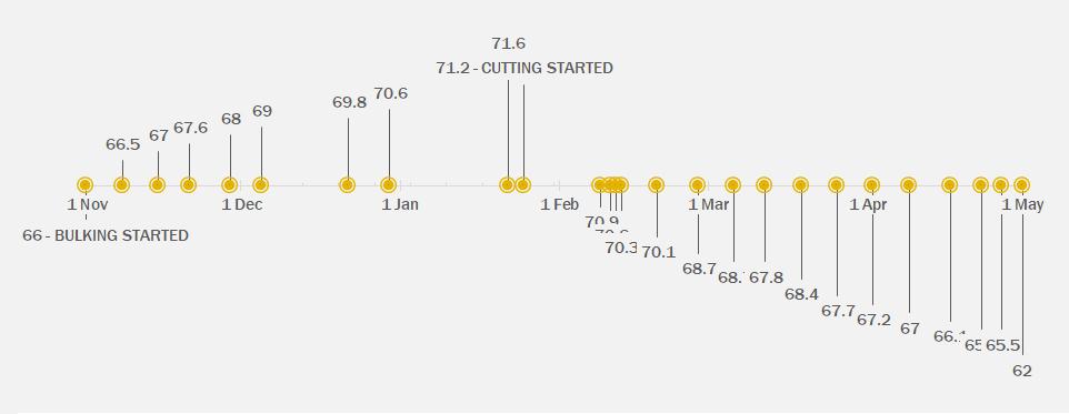 case study timeline